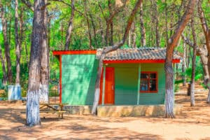 _a-small-guest-house-in-the-coniferous-forest