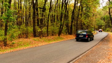 Cars with blurred motion on the forest road should i buy a second car